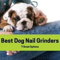 Best Dog Nail Grinder