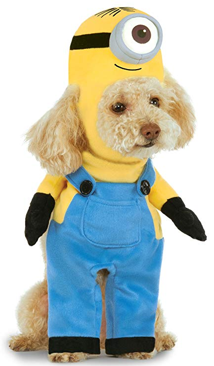 Little minion dog costume