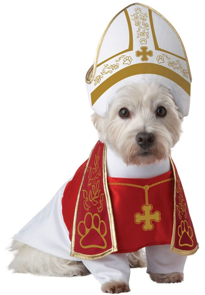 Priest Dog Costume