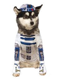 star war dog costume