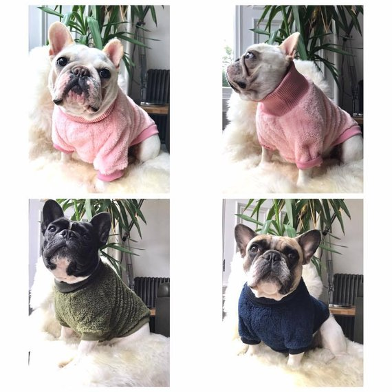 All Breed Dog Jumper